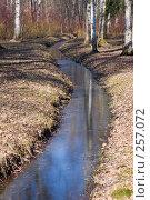 Купить «Весенний ручей», фото № 257072, снято 5 апреля 2008 г. (c) Argument / Фотобанк Лори
