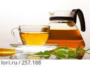 Купить «Травяной чай», фото № 257188, снято 22 июля 2005 г. (c) Кравецкий Геннадий / Фотобанк Лори