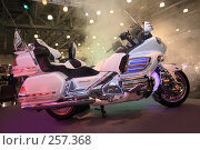 Купить «Выставка в Крокус Экспо», фото № 257368, снято 18 апреля 2008 г. (c) Коваленко Ирина / Фотобанк Лори