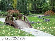 Купить «Декоративный мостик в осеннем саду», фото № 257956, снято 31 октября 2007 г. (c) Игорь Шаталов / Фотобанк Лори