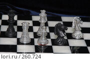 Купить «Шахматные фигуры. Декоративные изделия из серебра.», фото № 260724, снято 16 марта 2005 г. (c) Виктор Филиппович Погонцев / Фотобанк Лори
