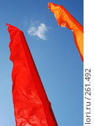 Купить «Цветной флаг», фото № 261492, снято 24 апреля 2008 г. (c) Брыков Дмитрий / Фотобанк Лори