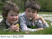 Купить «Брат и сестра», фото № 262000, снято 24 апреля 2008 г. (c) Екатерина Соловьева / Фотобанк Лори