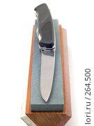 Купить «Нож с точильным камнем», фото № 264500, снято 28 апреля 2008 г. (c) Угоренков Александр / Фотобанк Лори