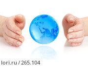 Купить «Руки и земной шар», фото № 265104, снято 15 января 2008 г. (c) Андрей Армягов / Фотобанк Лори