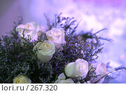 Купить «Свадеьный букет. Wedding bouquet», фото № 267320, снято 15 июля 2006 г. (c) Морозова Татьяна / Фотобанк Лори