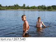 Купить «Мальчики стоят по пояс в воде. Река Дон.», фото № 267540, снято 24 мая 2005 г. (c) Виктор Филиппович Погонцев / Фотобанк Лори