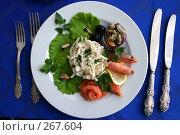 Купить «Салат из кальмаров», фото № 267604, снято 7 мая 2004 г. (c) Gagara / Фотобанк Лори