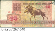 Купить «Купюра 25 рублей, Беларусь 1992 год. Лицевая сторона», фото № 267640, снято 13 ноября 2019 г. (c) Николай Шашурин / Фотобанк Лори