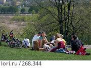 Купить «Семейный пикник в парке», фото № 268344, снято 27 апреля 2008 г. (c) Юрий Синицын / Фотобанк Лори