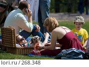 Купить «Семейный пикник в парке», фото № 268348, снято 27 апреля 2008 г. (c) Юрий Синицын / Фотобанк Лори