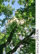 Купить «Санкт-Петербург. Вид на Исаакиевский собор», фото № 268836, снято 28 июня 2005 г. (c) Александр Секретарев / Фотобанк Лори
