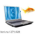 Купить «Рыба выпрыгивает из монитора», фото № 271028, снято 29 мая 2006 г. (c) Андрей Армягов / Фотобанк Лори