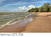 Купить «Морской берег», фото № 271732, снято 18 августа 2007 г. (c) Катыкин Сергей / Фотобанк Лори