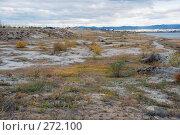 Купить «Здесь была вода. Обнажившееся дно озера Кенон.», эксклюзивное фото № 272100, снято 27 сентября 2007 г. (c) Александр Щепин / Фотобанк Лори