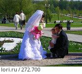 """Купить «Москва. Парк """"Царицыно"""". Молодожены с маленькими детьми», эксклюзивное фото № 272700, снято 4 мая 2008 г. (c) lana1501 / Фотобанк Лори"""