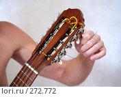 Купить «Гитара», фото № 272772, снято 7 апреля 2008 г. (c) Морозова Татьяна / Фотобанк Лори