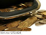 Купить «Кошелек с деньгами», фото № 272824, снято 13 декабря 2007 г. (c) Морозова Татьяна / Фотобанк Лори