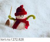 Купить «Снеговик на снегу», фото № 272828, снято 19 ноября 2006 г. (c) Морозова Татьяна / Фотобанк Лори