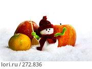 Купить «Снеговик и яблоки на снегу», фото № 272836, снято 19 ноября 2006 г. (c) Морозова Татьяна / Фотобанк Лори