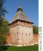Купить «Смоленск, крепостная стена», фото № 273308, снято 5 мая 2008 г. (c) Примак Полина / Фотобанк Лори