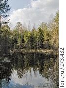 Купить «Лесное озеро весной», фото № 273432, снято 28 апреля 2008 г. (c) Игорь Соколов / Фотобанк Лори