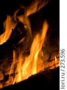 Купить «Горящие дрова», фото № 273596, снято 26 апреля 2008 г. (c) Малышева Мария / Фотобанк Лори