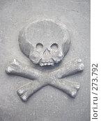 Символ смерти на надгоробной плите - череп и кости, фото № 273792, снято 28 апреля 2008 г. (c) Чертопруд Сергей / Фотобанк Лори