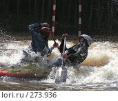 "Купить «""Двойка""», фото № 273936, снято 20 мая 2006 г. (c) Бурмакин Валерий Витальевич / Фотобанк Лори"