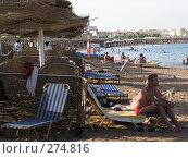 Купить «Берег Красного моря», фото № 274816, снято 1 января 2003 г. (c) Юлия Дашкова / Фотобанк Лори