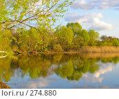 Купить «Весна. Озеро», фото № 274880, снято 16 июля 2018 г. (c) Светлана Кучинская / Фотобанк Лори