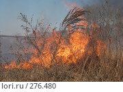 Купить «Горит сухая трава», фото № 276480, снято 7 мая 2008 г. (c) Григорий Погребняк / Фотобанк Лори