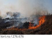 Купить «Горит сухая трава», фото № 276676, снято 7 мая 2008 г. (c) Григорий Погребняк / Фотобанк Лори