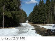 Купить «Весна. Тает снег», фото № 278140, снято 29 марта 2008 г. (c) Людмила Куклицкая / Фотобанк Лори