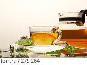 Купить «Чай», фото № 279264, снято 22 июля 2005 г. (c) Кравецкий Геннадий / Фотобанк Лори