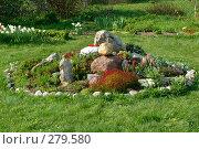 Купить «Альпийская горка на дачном участке», фото № 279580, снято 15 января 2005 г. (c) Ольга Дроздова / Фотобанк Лори