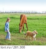 Купить «Девочка,лошадь и колли», фото № 281300, снято 20 апреля 2008 г. (c) Олег Хархан / Фотобанк Лори
