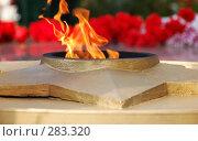 Купить «Вечный огонь. Крупный план», фото № 283320, снято 9 мая 2008 г. (c) Александр Катайцев / Фотобанк Лори