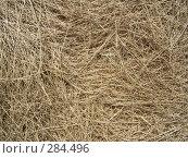Купить «Сухая трава», фото № 284496, снято 13 мая 2008 г. (c) Дудакова / Фотобанк Лори