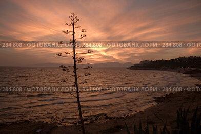 Купить «Морской пейзаж. Закат», эксклюзивное фото № 284808, снято 26 сентября 2005 г. (c) Александр Алексеев / Фотобанк Лори