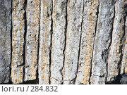 Купить «Старая кладка из каменных плит арочного перекрытия», эксклюзивное фото № 284832, снято 13 мая 2008 г. (c) Александр Щепин / Фотобанк Лори