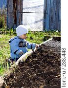 Купить «Маленький огородник», фото № 288448, снято 10 мая 2008 г. (c) Андрей Щекалев (AndreyPS) / Фотобанк Лори