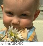 Купить «Ребенок с цветами», фото № 290460, снято 19 мая 2008 г. (c) Юля Тюмкая / Фотобанк Лори