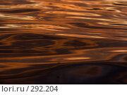 Купить «Абстракции на воде», фото № 292204, снято 18 сентября 2018 г. (c) Андрей Пашкевич / Фотобанк Лори