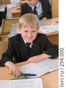 Купить «Хорошее настроение первоклассника на уроке», фото № 294000, снято 14 мая 2008 г. (c) Федор Королевский / Фотобанк Лори