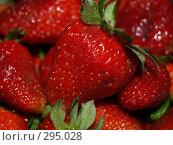 Купить «Клубника», фото № 295028, снято 1 мая 2008 г. (c) Примак Полина / Фотобанк Лори