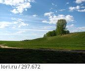 Купить «Дорога через поле», фото № 297672, снято 4 мая 2008 г. (c) Эдуард Кольга / Фотобанк Лори