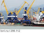 Купить «Портовые краны ведут погрузку кораблей в порту города Новороссийска», фото № 298112, снято 24 мая 2008 г. (c) Федор Королевский / Фотобанк Лори