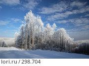Купить «Островок зимнего леса между просеками», фото № 298704, снято 20 января 2008 г. (c) Сергей Сынтин / Фотобанк Лори