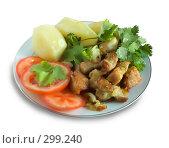 Купить «Жареное мясо с овощами на тарелке», фото № 299240, снято 18 мая 2008 г. (c) Яков Филимонов / Фотобанк Лори